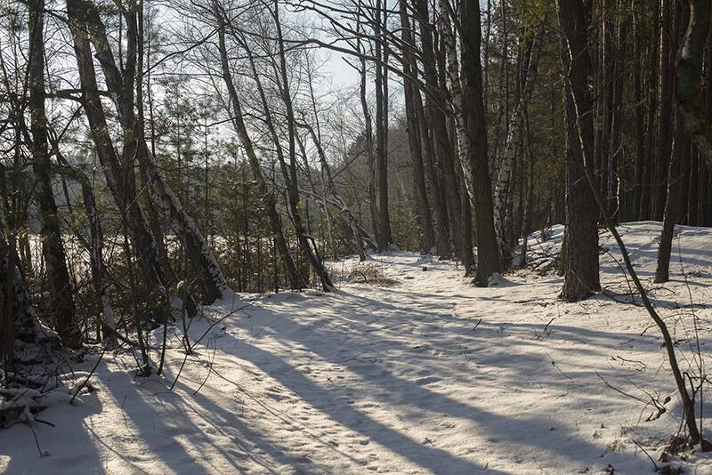 Zima piękną bywa..